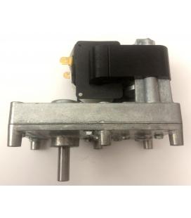 Motoréducteur PALAZZETTI 1,26 rpm CW