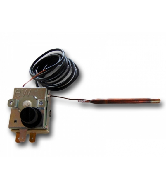 Thermostat de securité RM100°